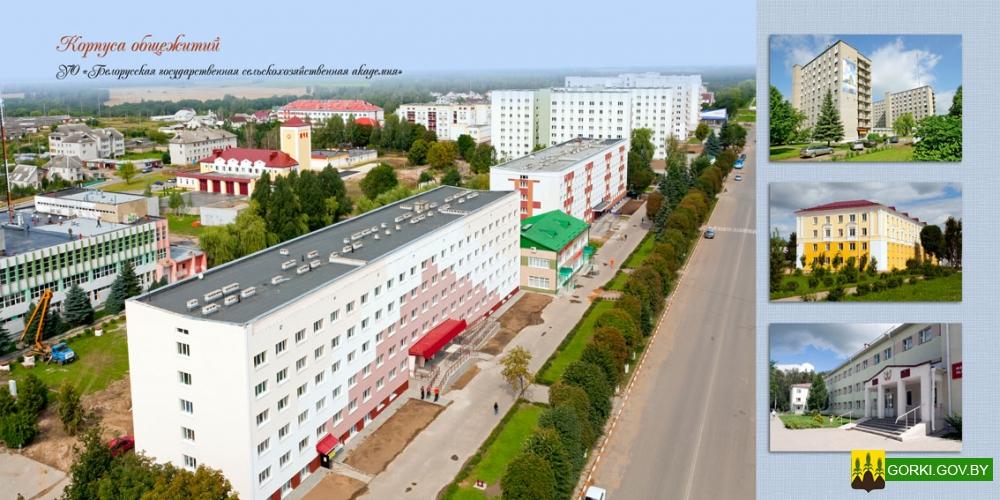 база как найти человека в белоруссии