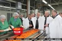 Беларусь и Россия сняли все острые экономические и общественно-политические вопросы - Лукашенко
