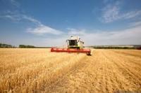 Первый миллион тонн зерна нового урожая