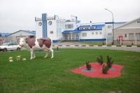 В Горках учебно-научно-практическая школа-ферма учит работать по-новому