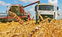 Аграрии Могилевской области приступили к уборке зерновых и зернобобовых культур