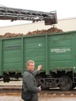 Горецкий район начал поставку сахарной свёклы на Городейский сахарный комбинат