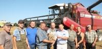 Урожай в Горецком районе обещает быть хорошим