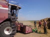 Студенты БГСХА помогают аграриям