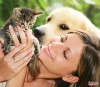 Правила содержания домашних собак, кошек, а также отлова безнадзорных животных в населённых пунктах Республики Беларусь