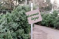 В Горках ёлочные базары начнут работать в преддверии католического Рождества